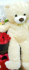 Urs Plus Diverse Culori 25cm